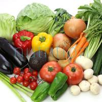 栄養プランニング